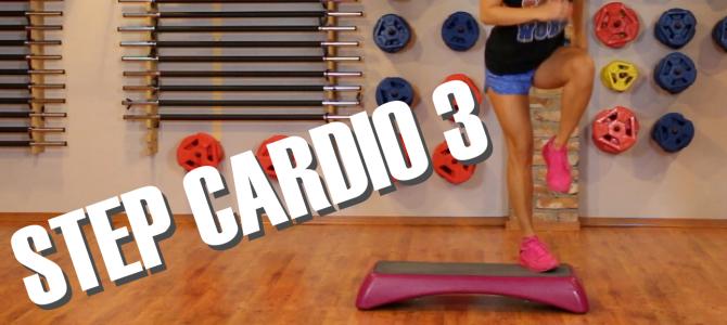 Step Cardio 3